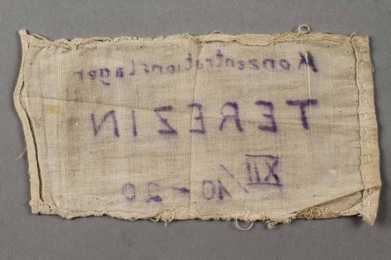 2018.427.6 back Theresienstadt armband with prisoner number worn by a liberated German Jewish prisoner