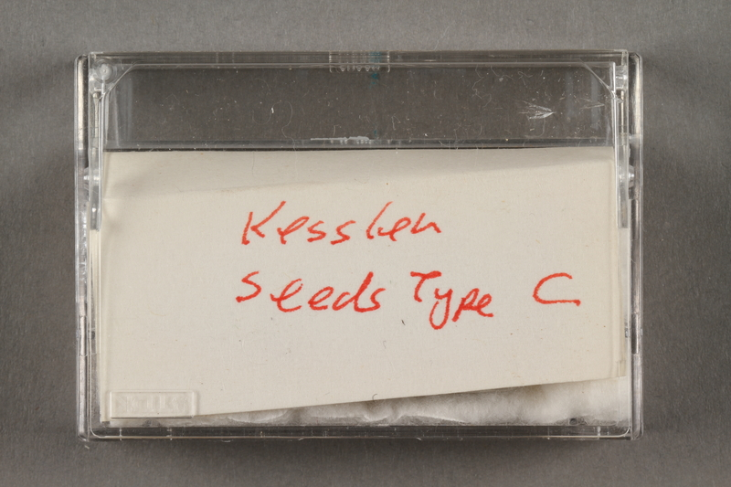 """2019.183.15 side a Seeds """"Type C"""""""