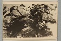 1992.8.15_e front Universal=Ugende für jüdische Kultusbeamte : Handbuch für den Gebrauch in Synagoge, Schule und Haus / Lion Wolff  Click to enlarge