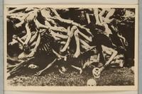 1992.8.15_f front Universal=Ugende für jüdische Kultusbeamte : Handbuch für den Gebrauch in Synagoge, Schule und Haus / Lion Wolff  Click to enlarge