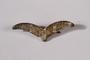 Luftwaffe gull wing rank pin