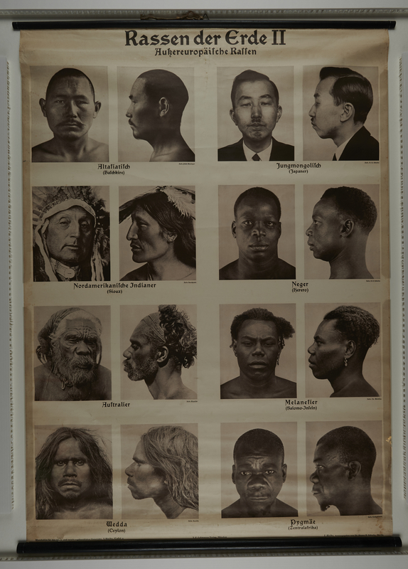 2014.325.2 front Photographic wall chart of inferior non-European races for teaching racial hygiene