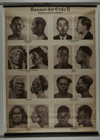 2014.325.2 front Photographic wall chart of inferior non-European races for teaching racial hygiene  Click to enlarge